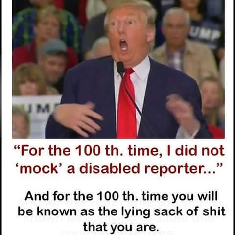 If you as a Christian had a handicapped child, how would you feel if Donald J Trump insulted them the way he insulted this disabled reporter?