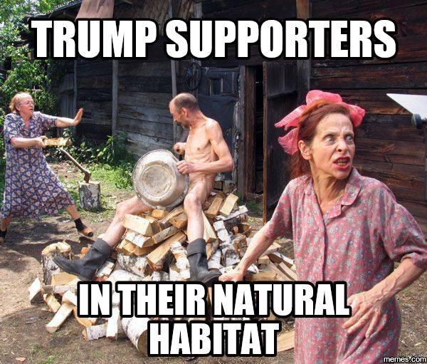 Trumpanzees in their natural habitat.