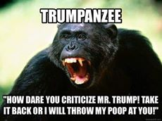 Trumpanzee How dare you criticize Mr Trump!!! Take it back or I will throw my poop at you!!!